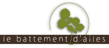 BATTEMENT D'AILES LOGO